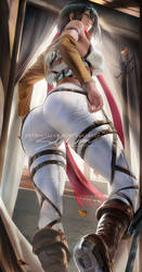 Mikasa back