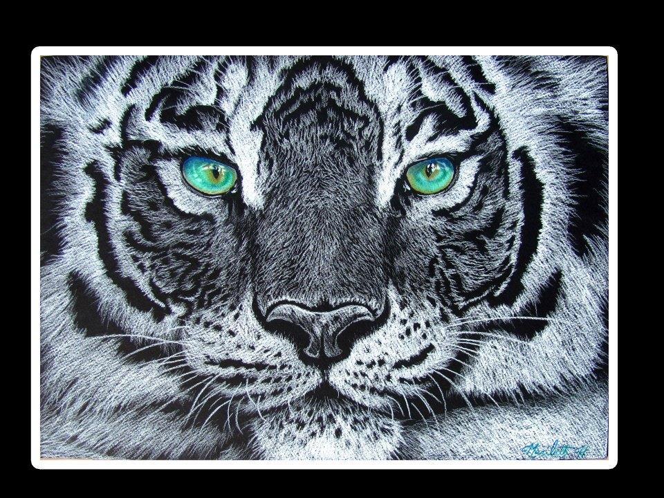 green tiger afvallen