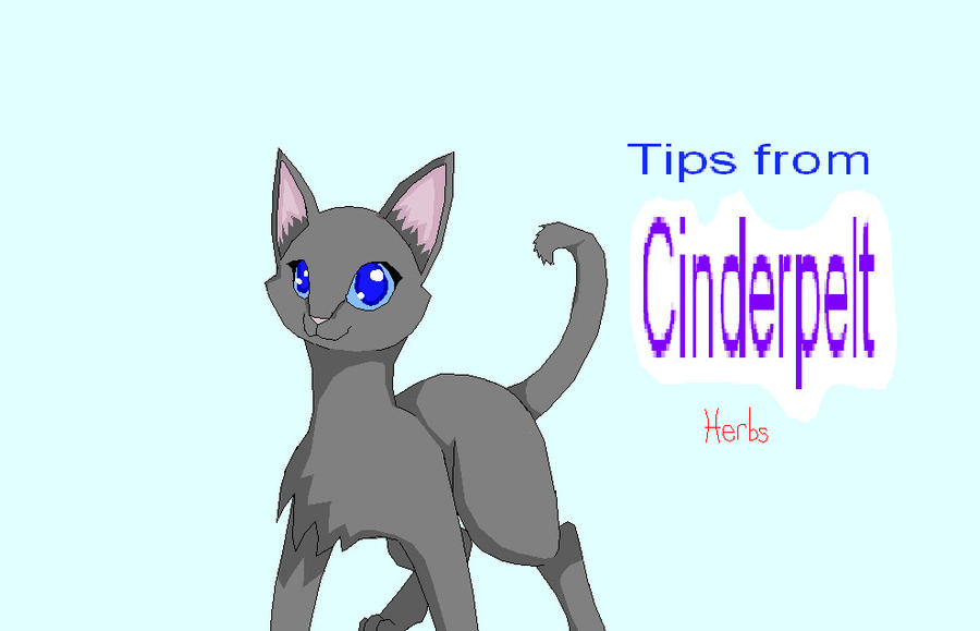 Warriors Cats Cinderpelt Tips from Cinderpelt Herbs by
