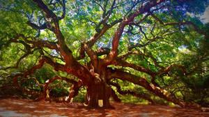 memories seep from my veins (angel oak) by shuckaby
