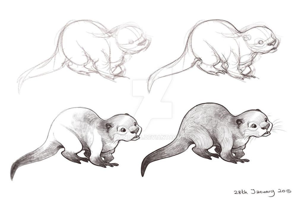 Otter by Sandora