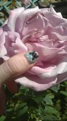 Fresh nail 2.0
