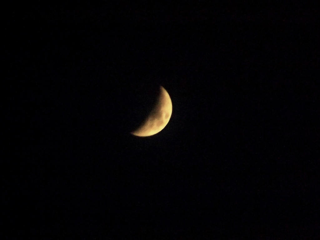 Half Moon by MindlessAngel