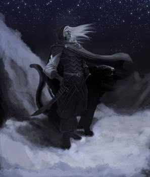 Drizzt and Guenhwyvar.