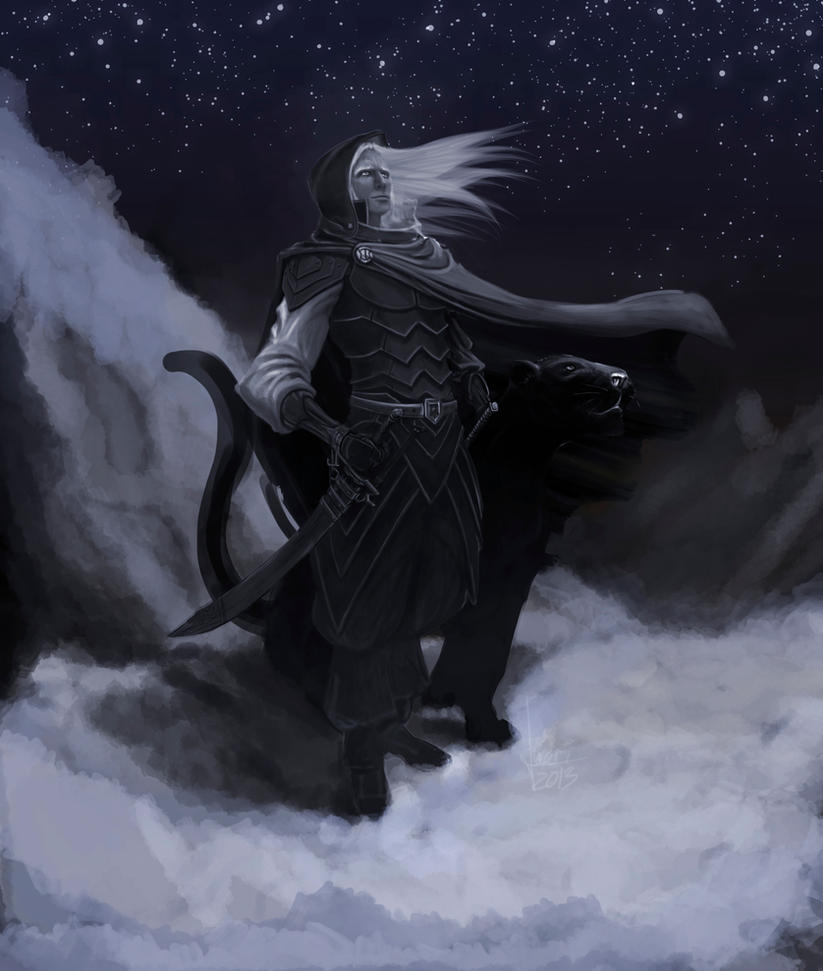 Drizzt and Guenhwyvar. by jucari