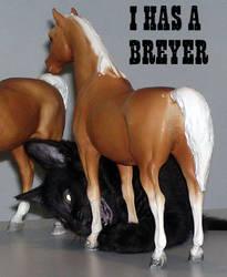 LOLcat I has a Breyer by silverdragon76
