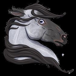 Memini by silverdragon76