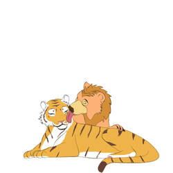 Comforting a tiger