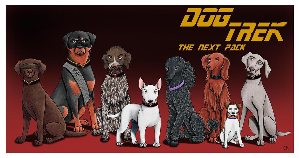 Doctor Dog Tv Show