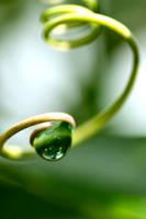 Green droplet by MrJamieBla