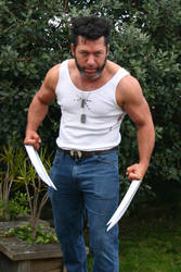 Wolverine Cosplay by Packwood