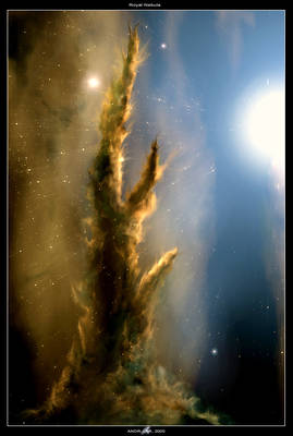 Royal Nebula