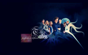 The cullens by affliction37mm