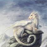 Son of winter