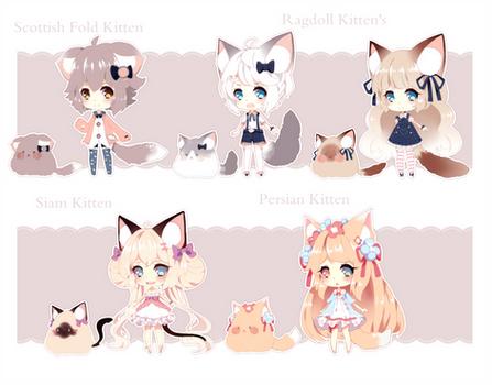 Kitten BBPP Batch Auction [Closed]