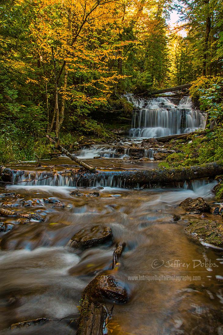 A beautiful autumn by JeffreyDobbs