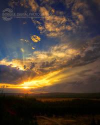 Yellowstone Skies
