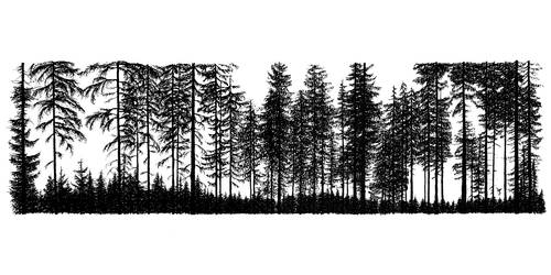 Ink forest by InkingArt