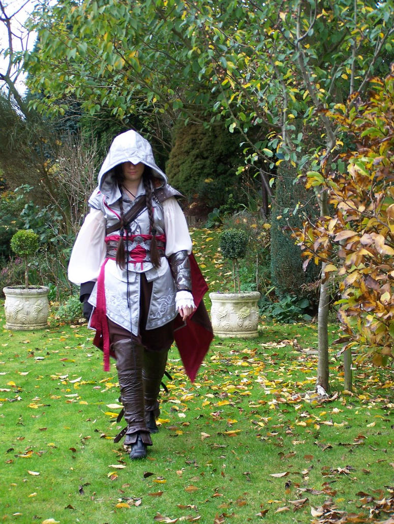 Assassin's Creed by Saberryna