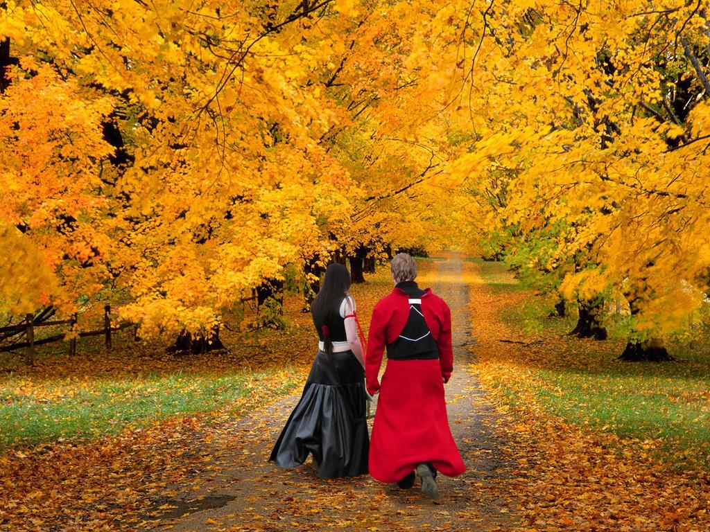We Walk our own Path by Yoruichi-Takashi