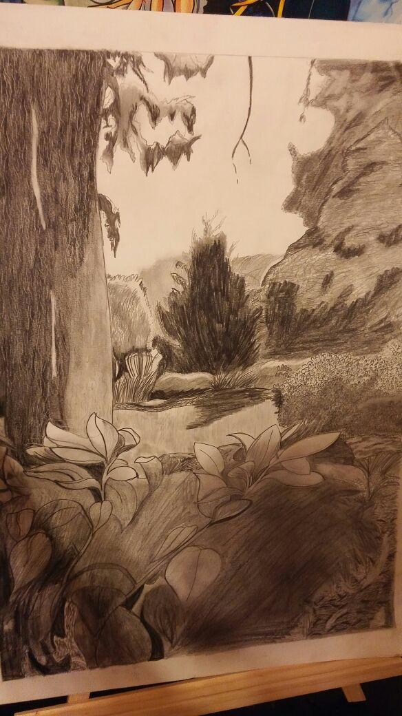 Drawing 1 Drawing Nature by sorasarah212