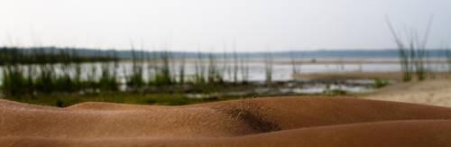 landscape of a body by olivernewton
