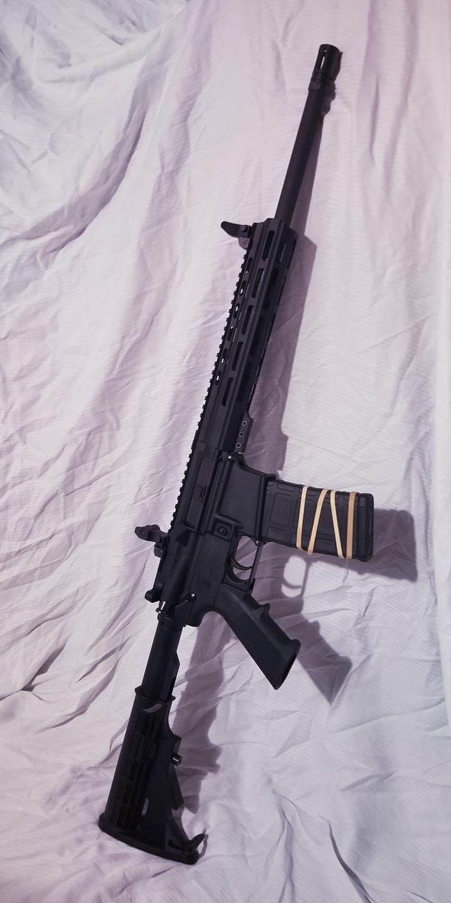 My New/First AR-15 by DeRezzurektion