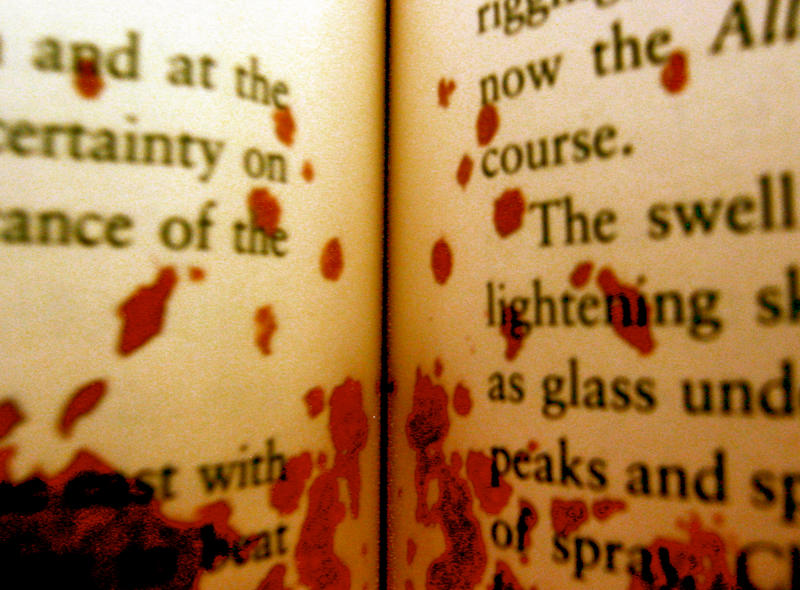 Resultado de imagen de book blood