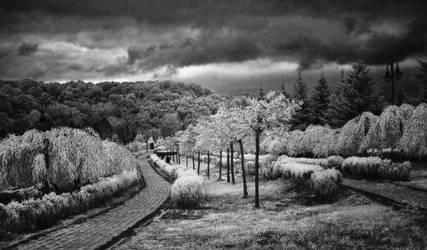 Way by IgorVladi
