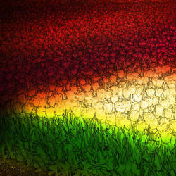 Tulips by IgorVladi