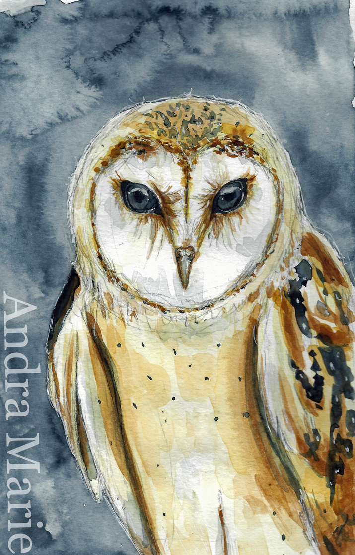 Watercolor Owl by LotusQueen-Andi