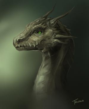 Dragon2 by Trioza