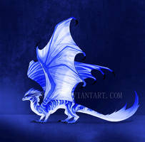 Dragon Design Auction #6 [CLOSED] by Trioza