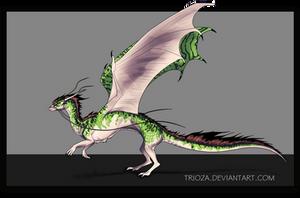 Dragon Design Auction #25 [CLOSED] by Trioza