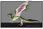 Dragon Design Auction #25 [CLOSED]