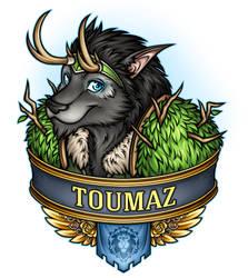 BC2017 Toumaz