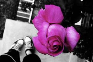 Radiant Bloom by zombieslavedisco