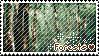 Forest by AlixtheWolf