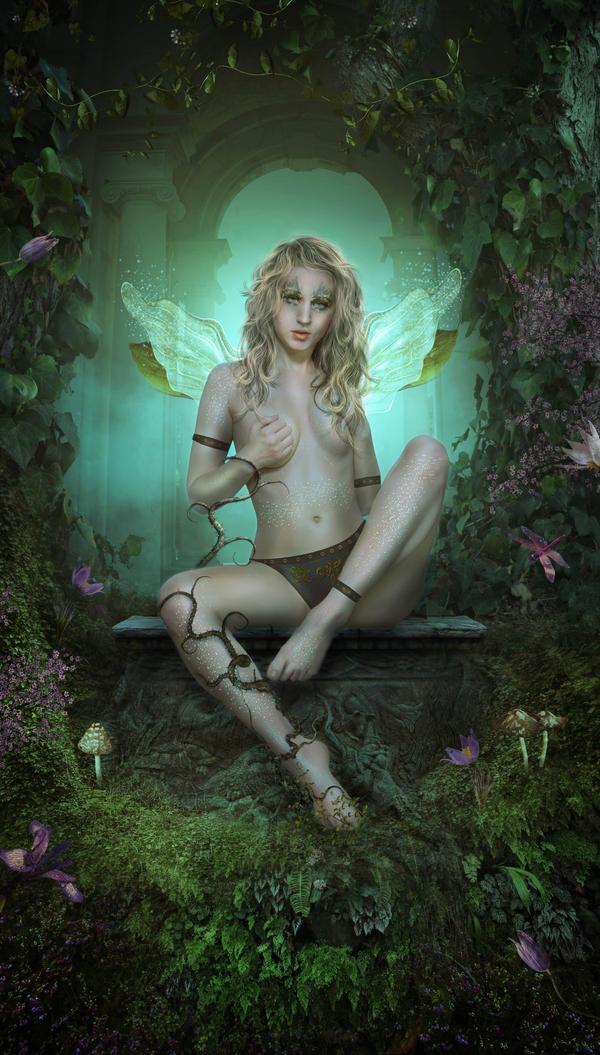 Fairy Dream by charmedy