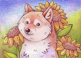 Doge with sunflowers by yeyeyy