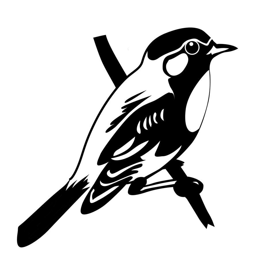 black bird by capey999 on deviantart