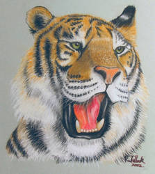 Tiger Practice Piece by Clayofmyclay