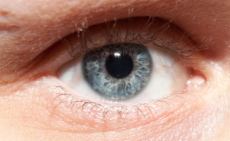 Macro Blue Eye Stock by CNStock