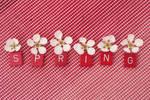 Spring Wallpaper by Starlizz
