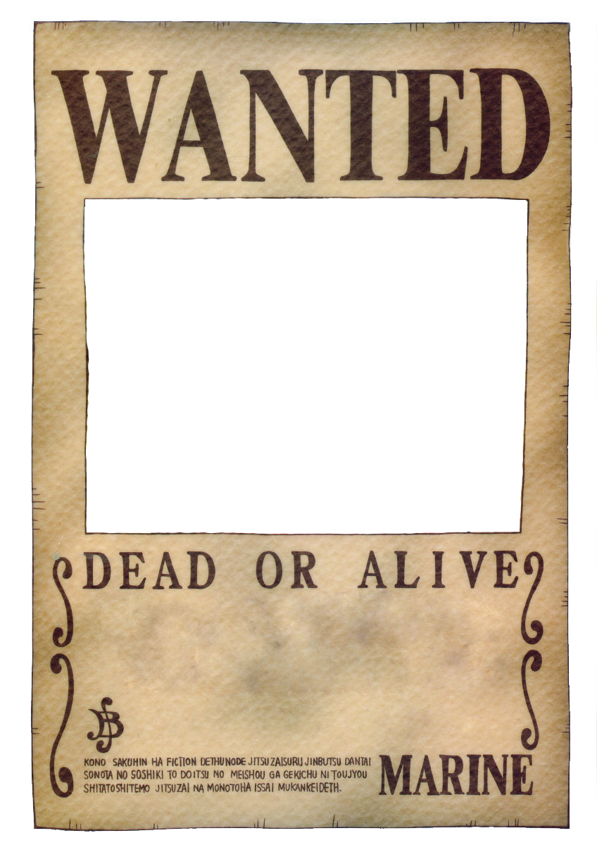 Wanted Poster One Piece Wanted Poste...