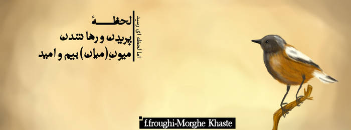 Fb Cover-Foroughi Morghe khaste