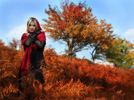 Scarlet field by DarkVenusPersephonae