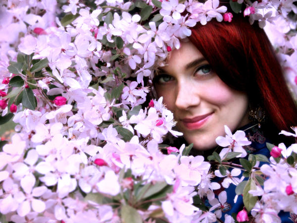 Pink blossom II by DarkVenusPersephonae - Mor Avatarlar