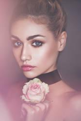 Blushing Rose by DarkVenusPersephonae