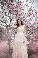 Magnolia Blossom by DarkVenusPersephonae